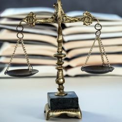 Expert Opinion for Court Cases
